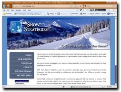 Snow Strategies